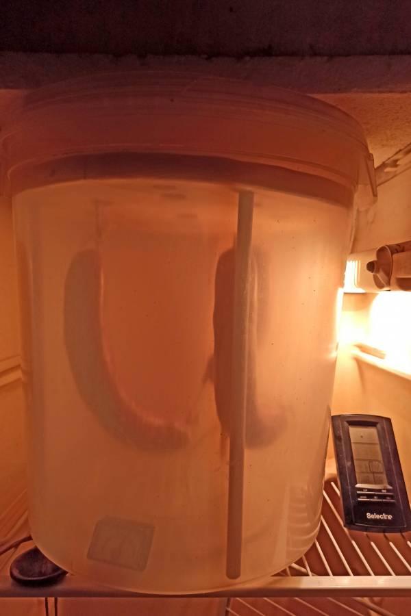 Reifeeimer im Kühlschrank